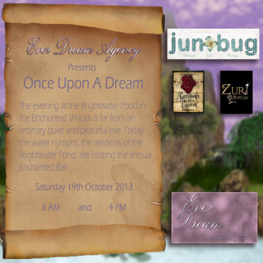 Junbug show invitation, 19th October 2013 6am and 4pm
